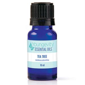 Picture of Tea Tree Essential Oil - 10ml